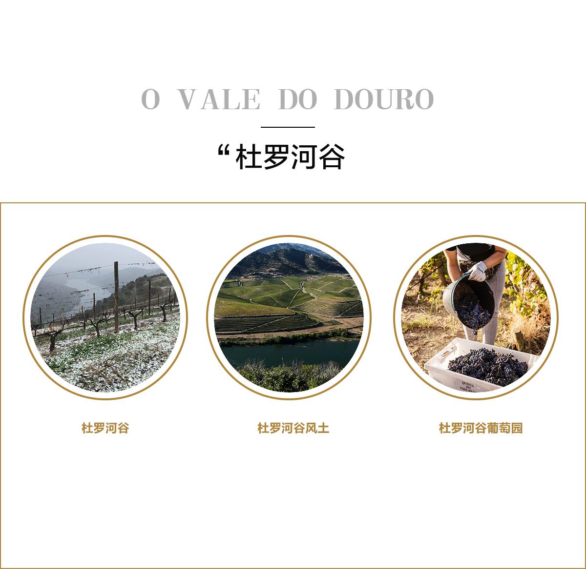 華麗美奧酒莊 Quinta Do Vale Me?o